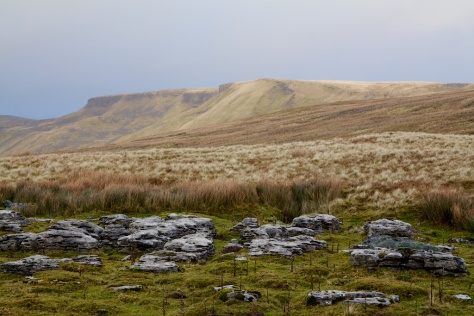 Mallerstang Common