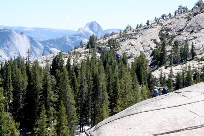 Yosemite Wild?