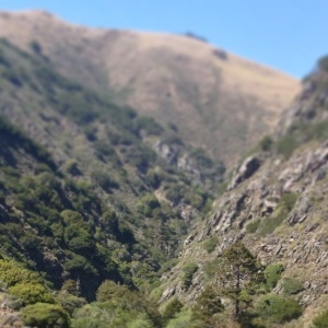 The Big Creek watershed reaches back to the Los Padres National Forest