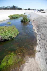 Compton Creek