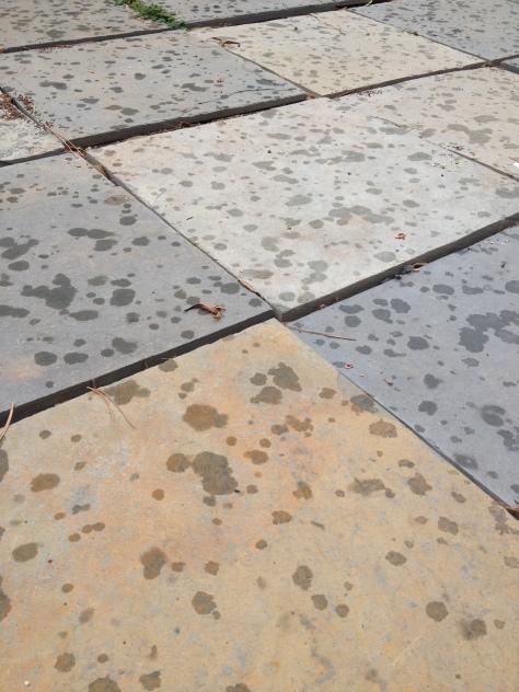First spots of rain falling