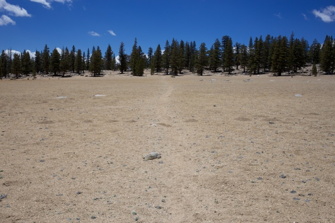 Drought in the Sierra