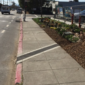 A curb-cut captures water from the street and directs it into a rain garden.