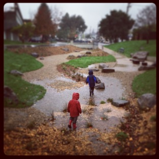 playing in the rain garden