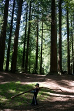 Playing amid the woods, Roberts Recreational