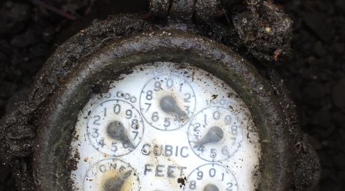 The challenge of cutting water use by 25 per cent – the water meter