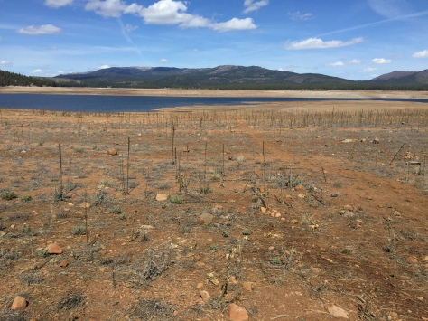 Water levels are critically low in Stampede Reservoir