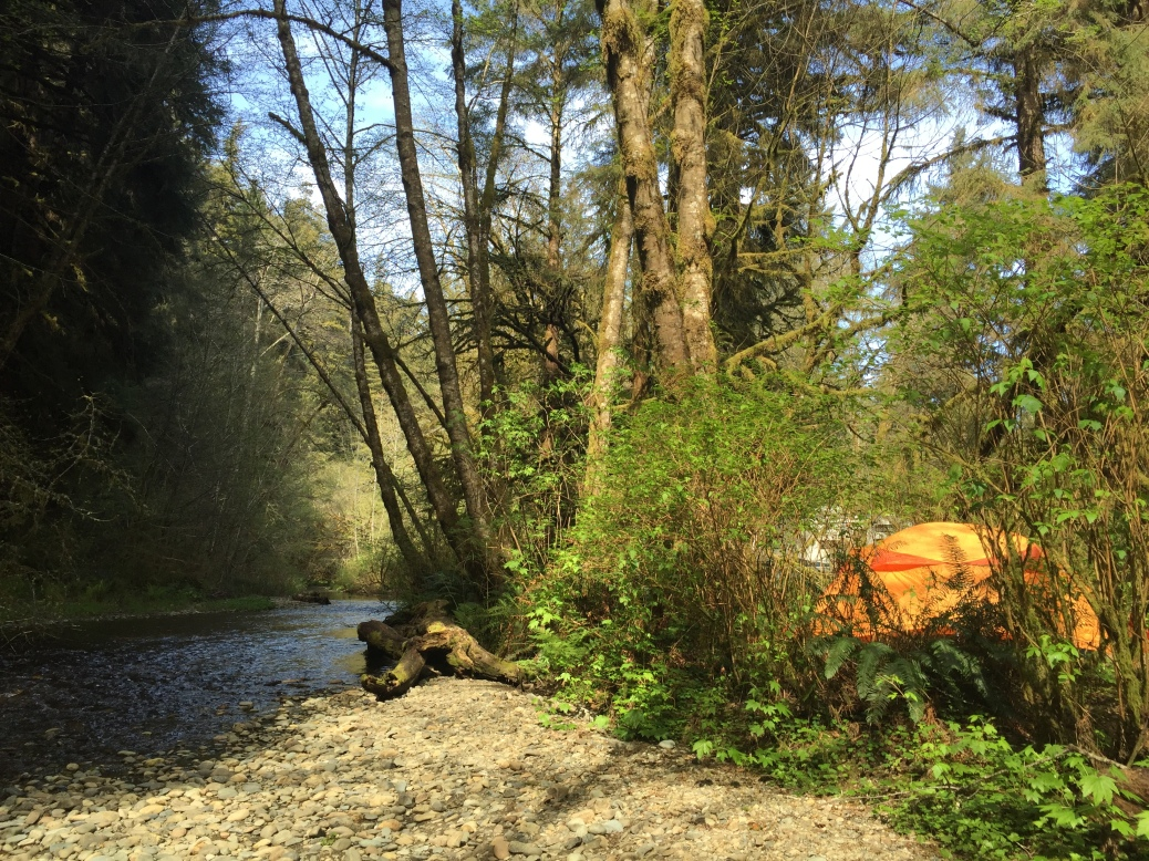 Camping at Prairie Creek Redwoods State Park