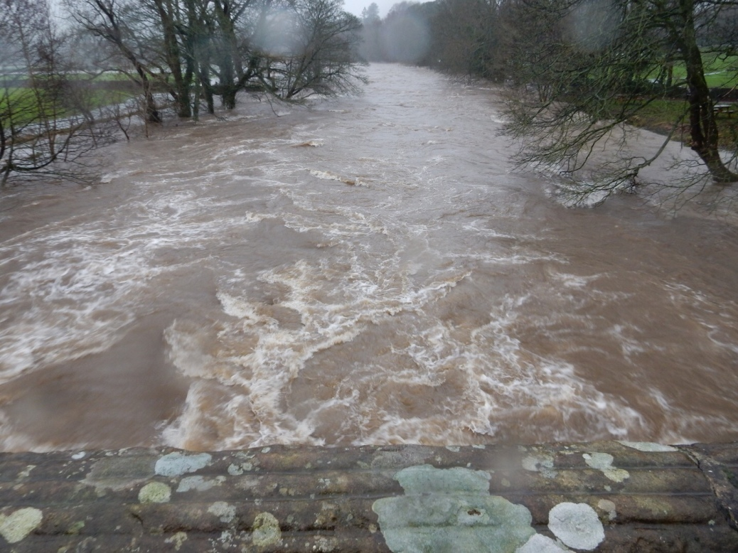 THE RIVER RAWTHEY LAPS OVER ITS BANKS, SEDBERGH, UK