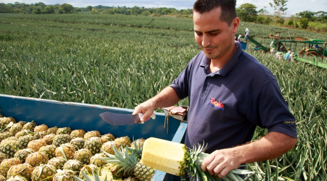 Did you know that pineapples sold in the USA built a community center in Costa Rica?